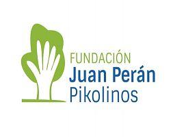 https://www.fundacionjuanperanpikolinos.org/
